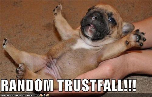trustfallfail